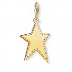 Thomas Sabo Charm Pendant Golden Star Y0040-413-39