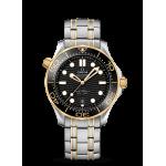 Omega Seamaster Diver 300M Black Dial Steel & Gold 42mm