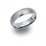 Unique & Co Polished & Satin Titanium Ring TR-4