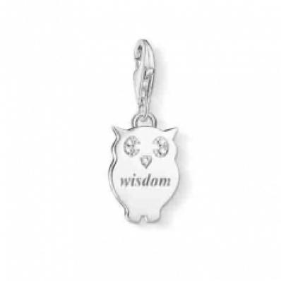 Thomas Sabo Special 10th Anniversary Silver & Diamond Wisdom Owl Charm DC0033-725-14